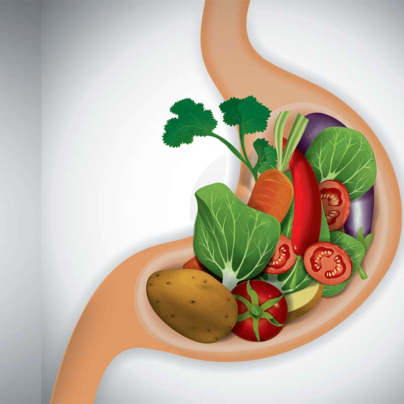 اهمیت رژیم غذایی در بیماری زخم معده